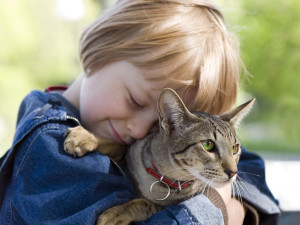 young-boy-saved-by-cat-600x450